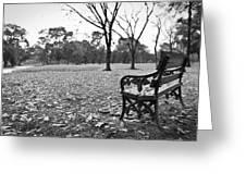 Corner Of Peace Greeting Card
