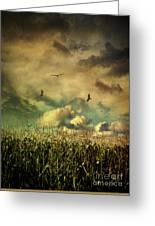 Cornfield In Summer With Dark Skies Greeting Card