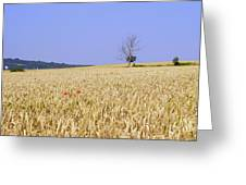 Cornfield With Poppies Greeting Card