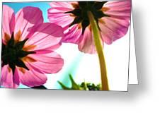 Cosmia Flower Twins Greeting Card