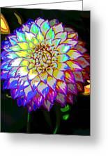 Cosmic Natural Beauty Greeting Card