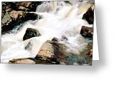 Cotton Waters Greeting Card