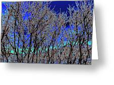 Cottonwood Line Up Greeting Card