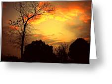 Cottonwood Sunset Greeting Card
