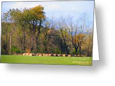 Country Bails Greeting Card