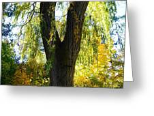 Country Color 20 Greeting Card