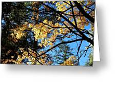 Country Color 25 Greeting Card