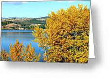 Country Color 5 Greeting Card