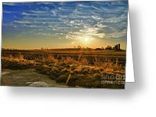 Country Light Greeting Card