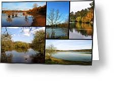 Country Parks Collage Greeting Card