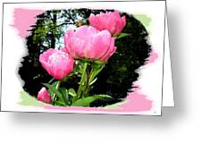 Country Peonies Greeting Card