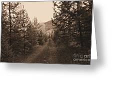 Country Road In Sepia  Greeting Card