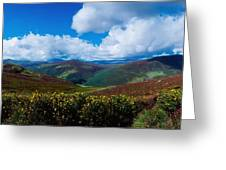 Country Road, Near Luggala Mountain, Co Greeting Card