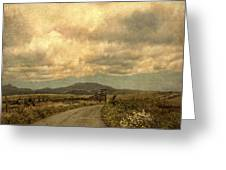 Country Road With Wildflowers Greeting Card