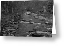 Country Stream Bw Greeting Card