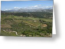 countryside in Spain Greeting Card