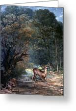 Courbet: Hunted Deer, 1866 Greeting Card