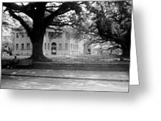 Courthouse And Town Square- Woodville Mississippi Greeting Card