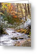Courthouse River In The Fall Greeting Card