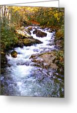 Courthouse River In The Fall Filtered Greeting Card