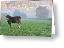 Cow On The Foggy Field Greeting Card
