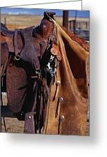 Cowboys Saddle And Chaps Detail Greeting Card