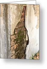 Crack In The Wall Greeting Card