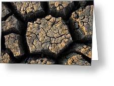 Cracked, Dried Out Mud, Mokolodi Nature Greeting Card