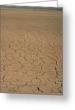 Cracked Mud Bed Of Aral Sea Greeting Card