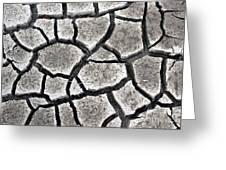 Cracked Mud Greeting Card