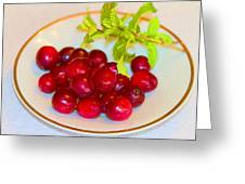 Cranberries And Mint Greeting Card