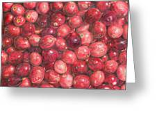 Cranberries Greeting Card