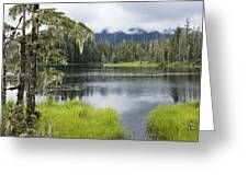 Crane Lake, Tongass National Forest Greeting Card