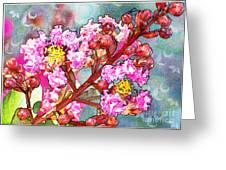Crape Myrtle Blank Greeting Card Greeting Card