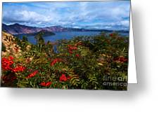 Crater Berries Greeting Card