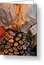 Crazee Corn Colors Greeting Card