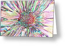 Crazy Daisy Colored Pencil Photoart Greeting Card