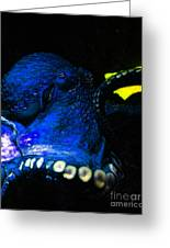 Creatures Of The Deep - The Octopus - V6 - Blue Greeting Card by Wingsdomain Art and Photography