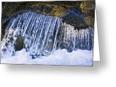Creek In Mount Rainier National Park Greeting Card