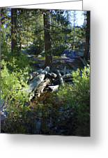 Creek In White Wolf Greeting Card