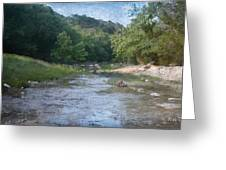 Creek Near Camp Verde  9107 Greeting Card