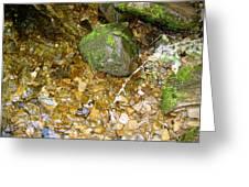 Creek Stones Greeting Card