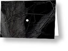 Creepy Tree And Full Moon Greeting Card