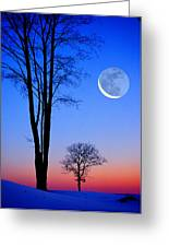 Crescent Through Trees Greeting Card