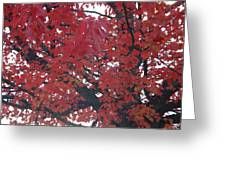 Crimson Leaves Greeting Card