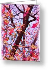 Crisp Autumn Day Greeting Card