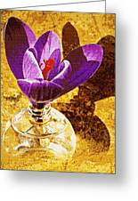 Crocus Graphic  Greeting Card