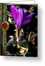 Crocus In A Bottle Greeting Card