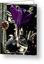 Crocus In A Bottle Number Two Greeting Card