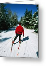Cross-country Skiing, Lake Placid, New Greeting Card